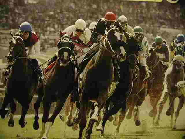 Horse Racing Free Picks, Free Horse Racing Betting Systems, Horse Racing Dutching